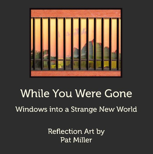 View While You Were Gone by Pat Miller
