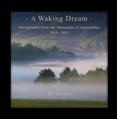 A Waking Dream book cover