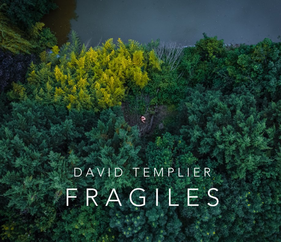 View Fragiles by David Templier
