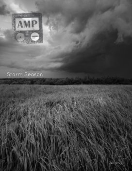 AMP - Fall 2020 book cover