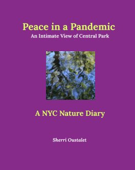 Peace in a Pandemic.  An Intimate View of Central Park book cover