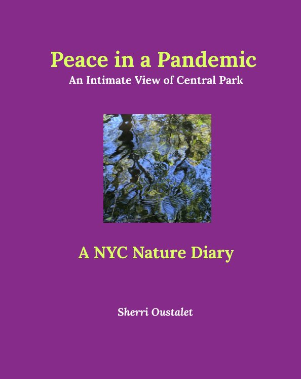 View Peace in a Pandemic.  An Intimate View of Central Park by Sherri Oustalet