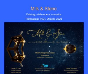Milk and Stone book cover