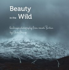 Beauty in the wild book cover