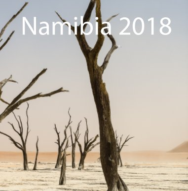 Namibia 2018 book cover
