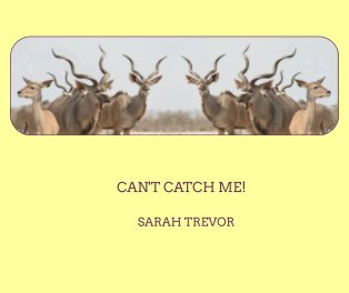 Can't Catch Me! book cover