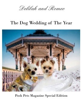 Dellah and Romeo Wedding book cover