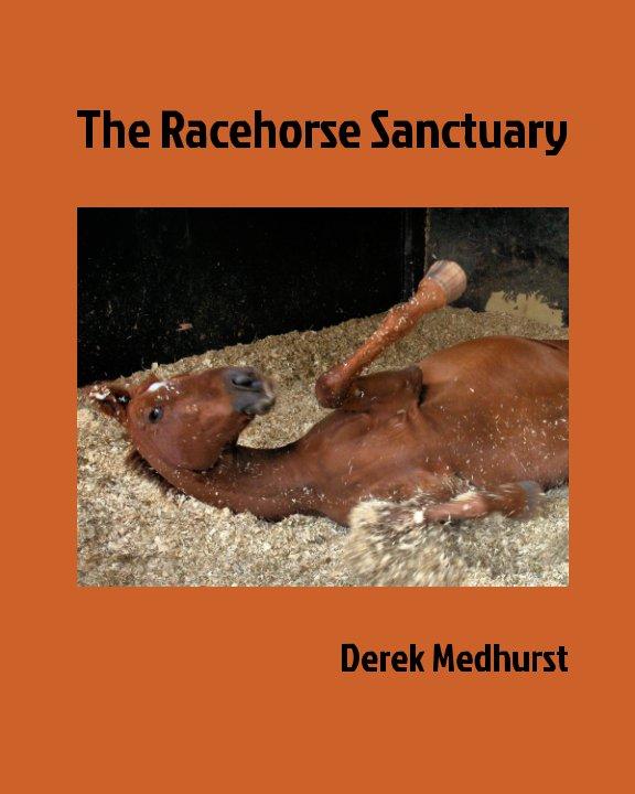 View Racehorse Sanctuary by Derek Medhurst