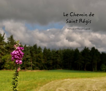 Le chemin de Saint Régis book cover