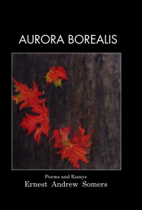 Aurora Borealis book cover