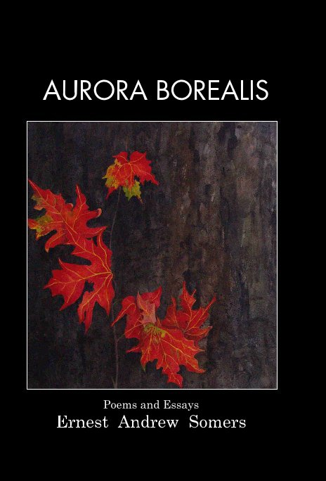 View Aurora Borealis by Ernest Andrew Somers