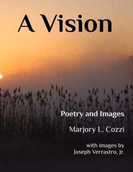 A Vision book cover