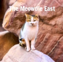 The Meowdle East book cover