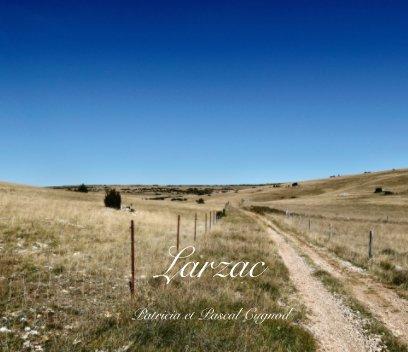 Larzac book cover