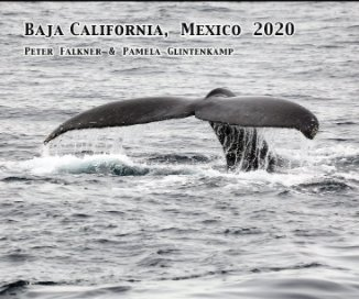 Baja California Mexico 2020 book cover
