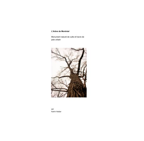 View L'arbre de Montréal, havre de paix urbain by karim Haidar