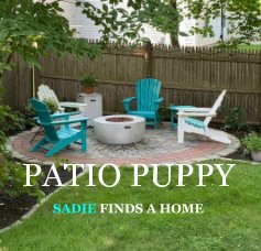 Patio Puppy book cover