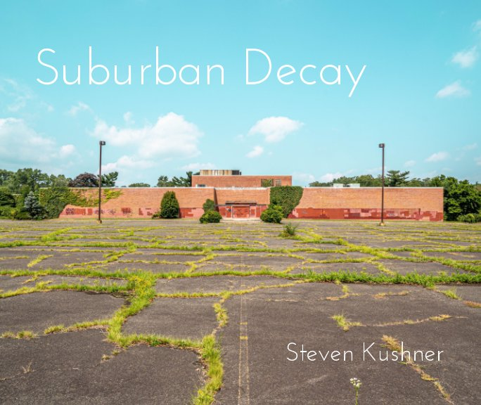 View Suburban Decay by Steven Kushner