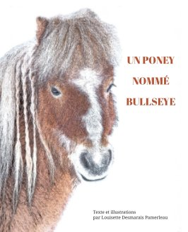 Un poney nommé Bullseye book cover