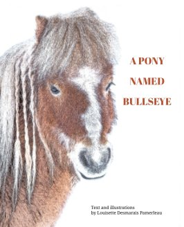 A pony named Bullseye book cover