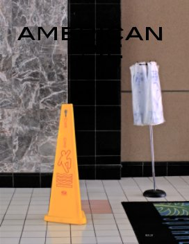 American Pie (Vol. 13) book cover