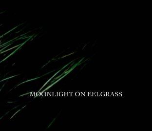 moonlight on eelgrass book cover