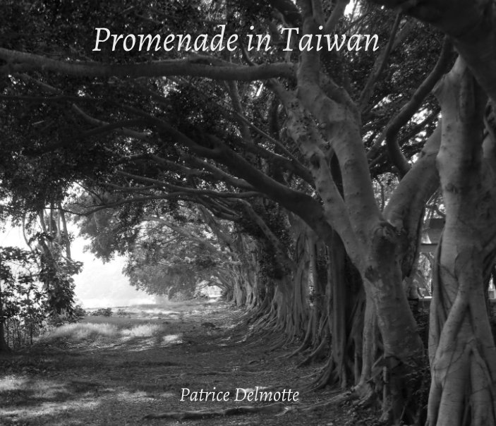 View Promenade in Taiwan - Part I - Fine Art Photo Collection by Patrice Delmotte