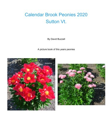 Calendar Brook Peonies 2020 book cover