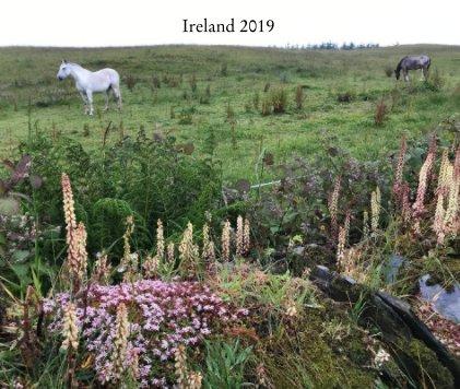 Ireland 2019 book cover