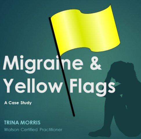 View Migraine and Yellow Flags by Trina Morris