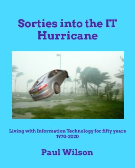Sorties into the IT Hurricane book cover
