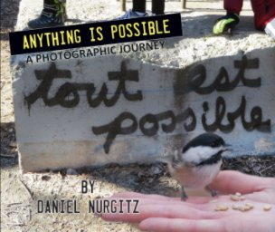 Tout est possible - Anything is Possible book cover