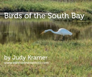 Birds of the South Bay book cover