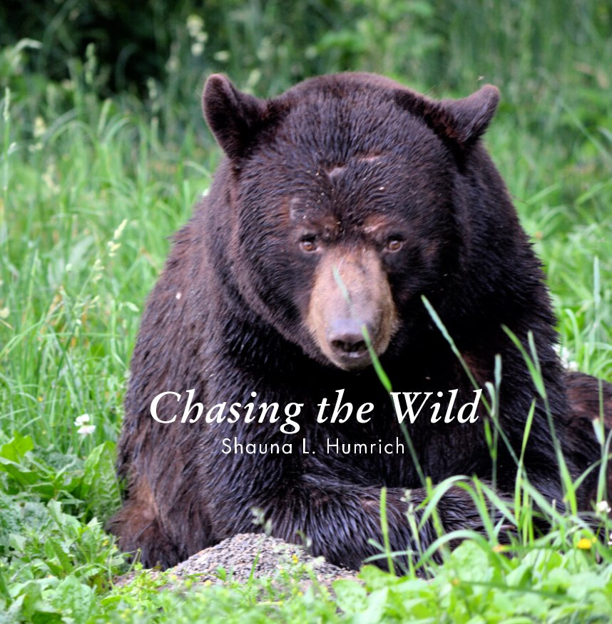 View Chasing The Wild by Shauna L. Humrich