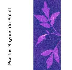 Par les Rayons du Soleil book cover