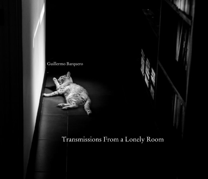 View Transmissions From a Lonely Room by Guillermo Barquero