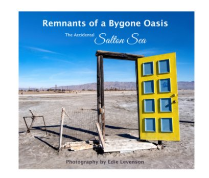 Remnants of a Bygone Oasis book cover