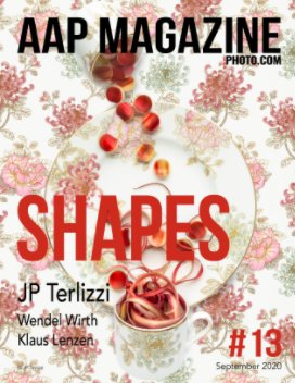 AAP Magazine#13 Shapes book cover