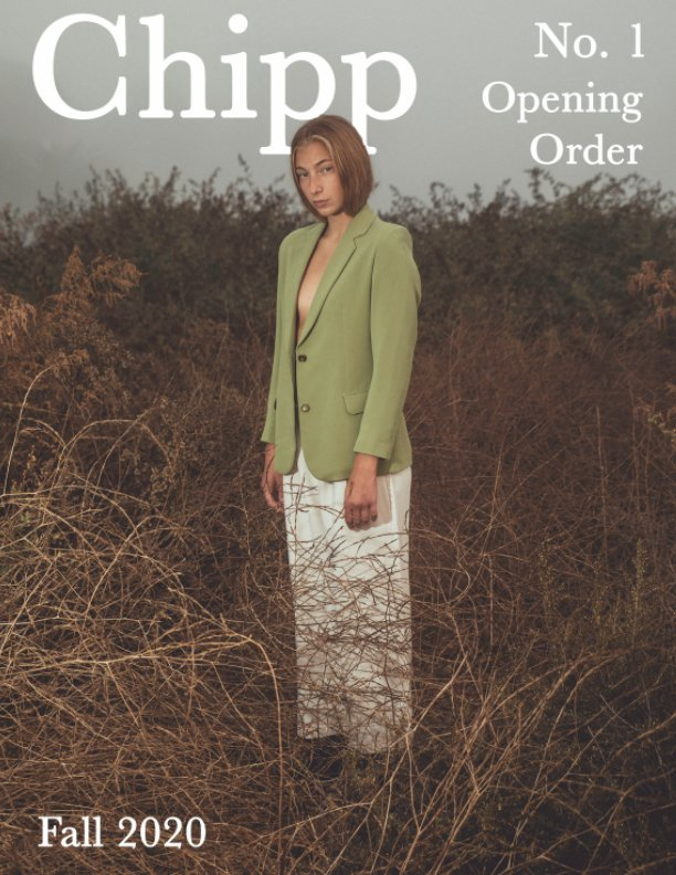 View Chipp Mag No. 1 by Milan DiLeo