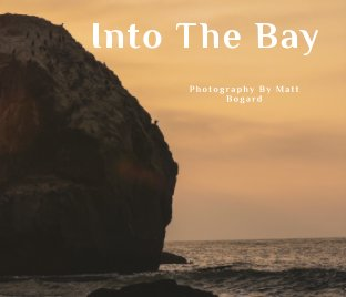Into the Bay book cover