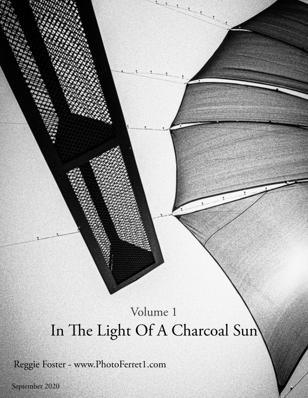 View In the Light of a Charcoal Sun by Reggie Foster