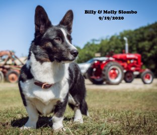Billy and Molly Slombo book cover