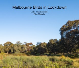 Melbourne Lockdown Birds book cover