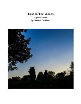 Lost In The Woods book cover