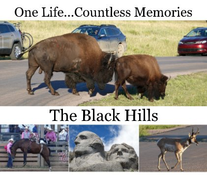 The Black Hills book cover
