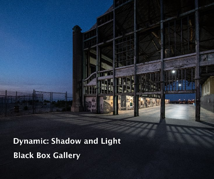 View Dynamic: Shadow and Light by Black Box Gallery