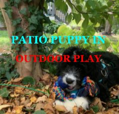 Patio Puppy In Outdoor Play book cover