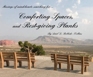 Comforting Spaces, and Rest-giving Planks book cover