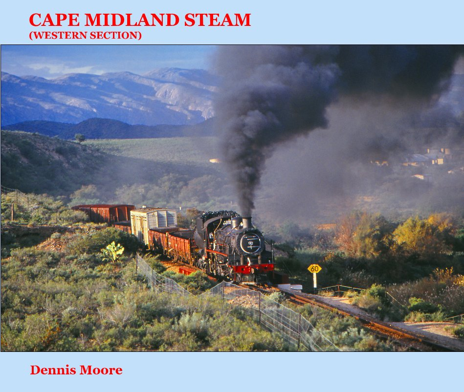 View CAPE MIDLAND STEAM (Western Section) - very large landscape version by Dennis Moore