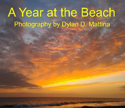 A Year at the Beach book cover